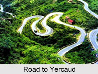 Yercaud Hill station, Tamil Nadu, South India
