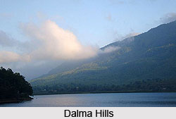 Dalma Hills, Jamshedpur