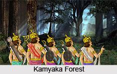 Kamyaka, Indian Forest