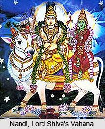 Nandi, Vahana of Lord Shiva