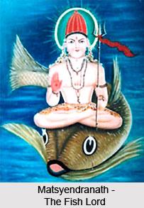 Nath Siddha Matsyendranath, Nath Siddhas