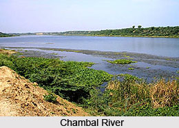 Tributaries of River Yamuna, Indian River