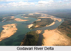 Ecological Significance of River Godavari, Indian River