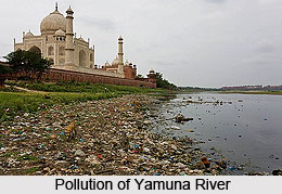 Pollution and Protection of Yamuna River