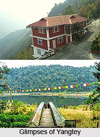 Yangtey, Gangtok