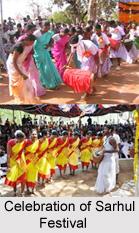 Sarhul Festival, Jharkhand