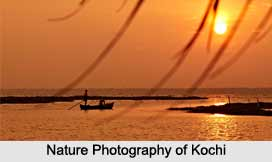 Nature Photography  In India