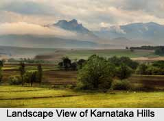 Landscape Photography  In India
