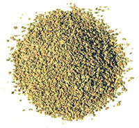 What is the meaning of celery seed in hindi