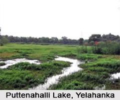 Puttenahalli Lake, Yelahanka, Bengaluru