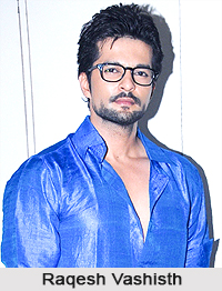 Raqesh Vashisth, Indian TV Actor