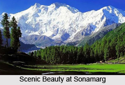 Sonamarg, City in Jammu and Kashmir