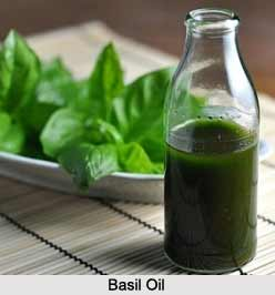Basil Oil, Aromatherapy Product
