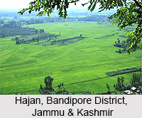 Hajan, Bandipore District, Jammu & Kashmir