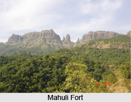 Mahuli Fort, Monument of Maharashtra