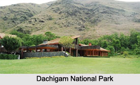 Dachigam National Park, Jammu and Kashmir
