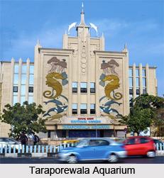Taraporewala Aquarium, Mumbai, Maharashtra