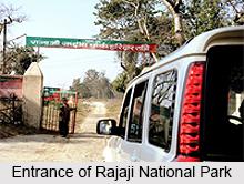 Rajaji National Park, National Park in Uttarakhand