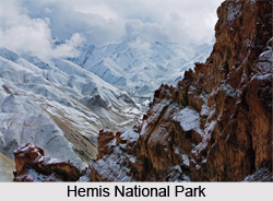 Hemis National Park, National Park in Jammu and Kashmir