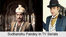 Sudhanshu Pandey, Indian TV Actor