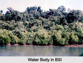 Botanical Survey of India, Andaman and Nicobar Islands