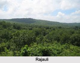 Rajauli, Nawada District, Bihar
