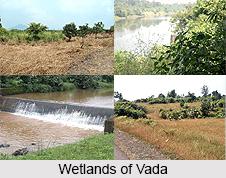 Vada, Palghar district, Maharashtra