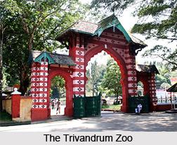 Trivandrum Zoo,Thiruvananthapuram, Kerala