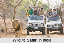 Nature Tourism in India