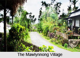 Mawlynnong Village, Meghalaya