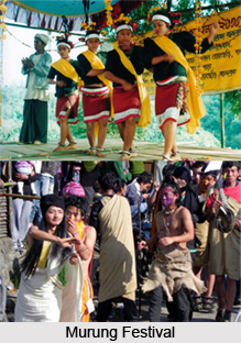 Murung Festival, Indian Tribal Festival