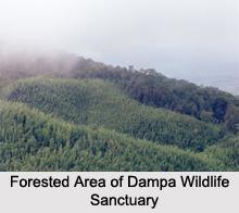 Dampa Tiger Reserve, Mizoram