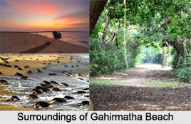 Gahirmatha Beach, Kendrapara District, Odisha