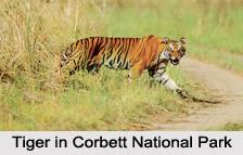 Uttaranchal Eco Parks