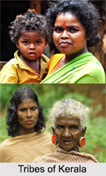 Tribes of Kerela