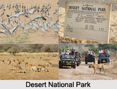 Desert National Park, Rajasthan