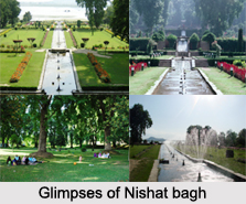 Architecture of Nishat Bagh