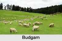 Budgam, Budgam District, Jammu and Kashmir