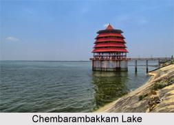 Chembarambakkam Lake, Tamil Nadu
