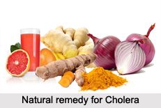 Natural Remedy for Cholera, Indian Naturopathy