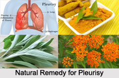 Natural Remedy for Pleurisy, Indian Naturopathy