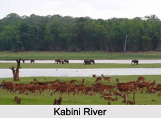 Places of Interest in and around Kabini River
