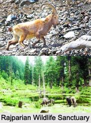 Rajparian Wildlife Sanctuary, Anantnag District, Jammu and Kashmir