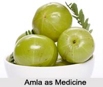 Use of Amla as Medicines, Classification of Medicine