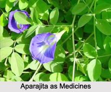Use of Aparajita as Medicines, Classification of Medicine