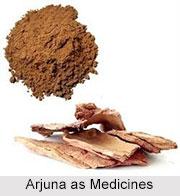 Use of Arjuna as Medicines, Classification of Medicine
