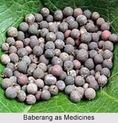Use of Baberang as Medicines, Classification of Medicine