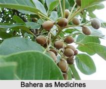 Use of Bahera as Medicines, Classification of Medicine