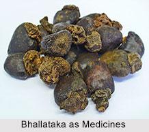 Use of Bhallataka as Medicines, Classification of Medicine