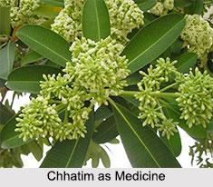 Use of Chhatim as Medicines, Classification of Medicine